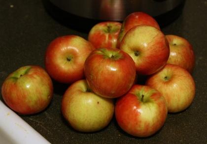 applesauce 1