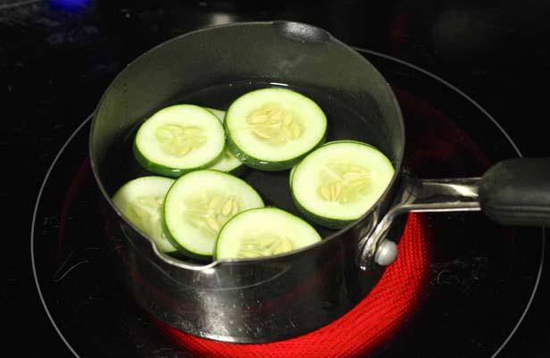cucumber scent