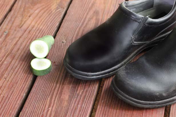 cucumber shoe