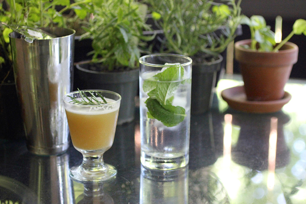 cocktailherbs