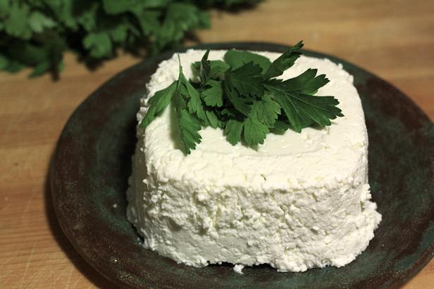 cheese11