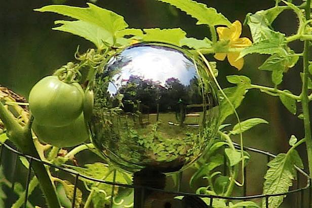gazing-ball