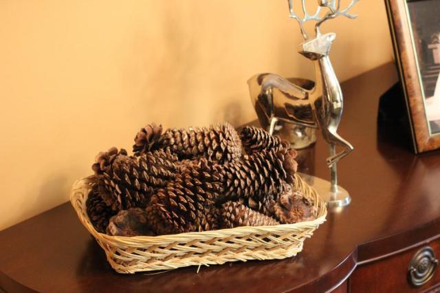 pinecones13