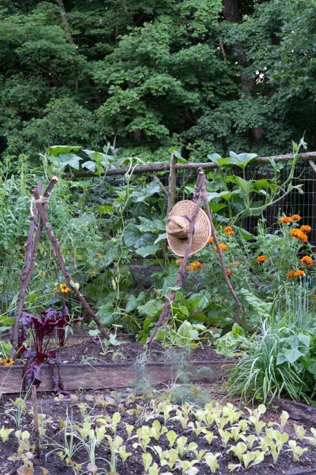 gardens7