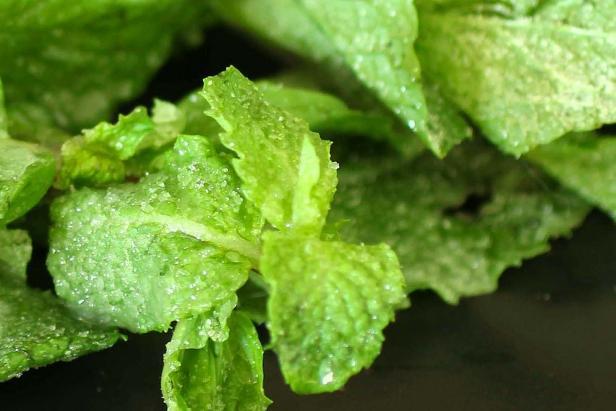 candy mint leaves.jpeg